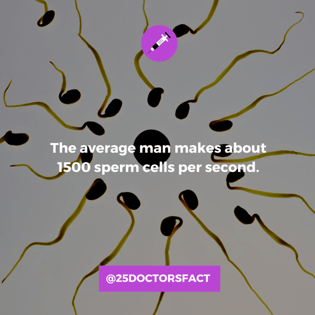 As a matter of fact, men produce about 1500 sperm cells every second and  will produce more than 500 billion sperm cells in a lifetime.