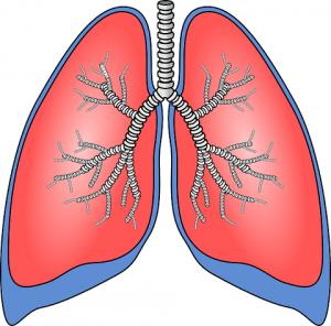 popcorn lungs
