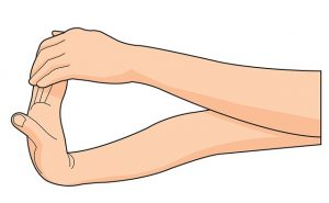 wrist flexion stretches