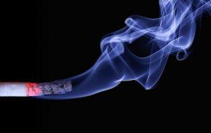 Smoking affects ligament healing