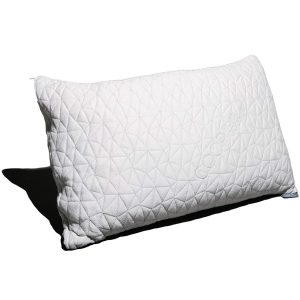 Coop Home Goods Pillow – Budget Pick